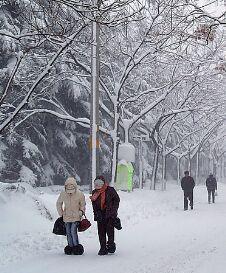 冬季银屑病为什么总是反复发作呢